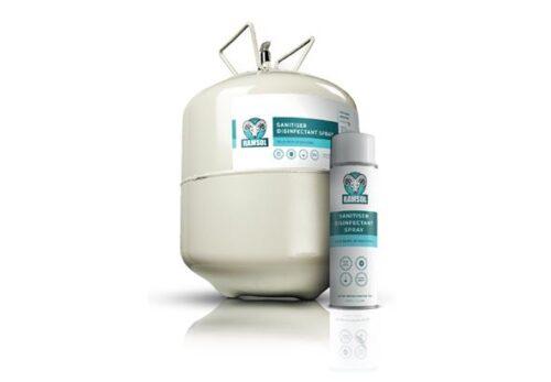 Spray désinfectant Ramsol